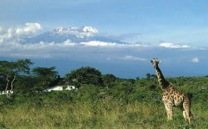 Tansania Reisen